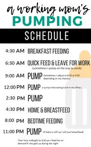 pump-schedule